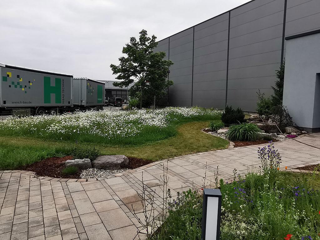 biotop-natur-landschaft-gartenbau-gerteiser-7